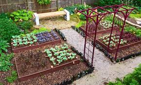Veggie Garden Design Ideas Best 20 Vegetable Garden Design Ideas For Green Living Morflora