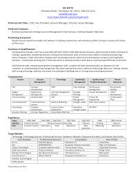 business sales plan templates e marketin cmerge