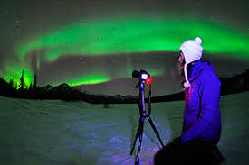anchorage alaska northern lights tour alaska tours polar bear tours iditarod tours northern lights