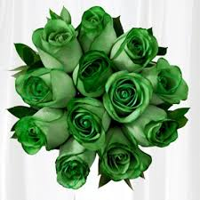 green roses roses