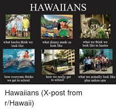 Hawaiian Memes - 25 best memes about what i really do hawaiian disney and