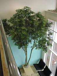 artificial trees defining a style series artificial trees redesigns your home with