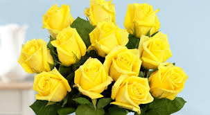 yellow roses with tips what different funeral flowers really expert tips for