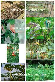 100 virgin pe garden trellis net garden climbing plants protect