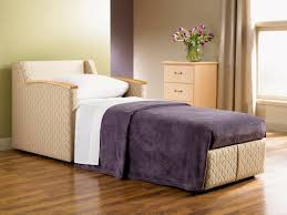 enjoyable chair pull out bed on furniture chairs with additional