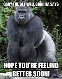 Get Well Soon Meme Funny - gary the get well gorrila says hope you re feeling better soon