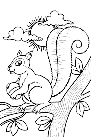 cute squirrel coloring boy playing treehouse