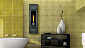 Contemporary Gas Fireplace Insert by Natural Modern Gas Fireplace Inserts Natural Modern Gas
