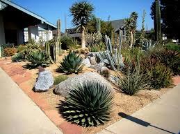 Drought Tolerant Backyard Ideas Drought Tolerant Landscape Ideas For Backyard Drought Tolerant