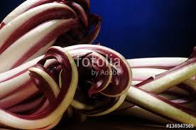 veneta cuisine radicio radicchio rosso tardivo di treviso cuxina cucina veneta