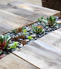 Tabletop Rock Garden Tabletop Rock Garden Green Style A Diy Succulent Scrap Wood