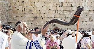 shofar horn the shofar the horn of plenty the chronicle