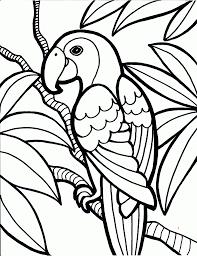 birds to color corpedo com