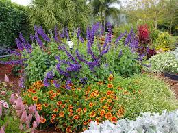 costa farm u0027s slideshow of easy care garden ideas includes garden