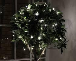 Fairy Light Tree by Fairy Lights Decorating Ideas Hometown Evolution