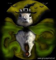 squirrel halloween postcards