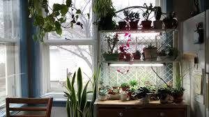 Kitchen Grow Lights Could I Get Advice For Supplemental Grow Lights For My Kitchen