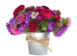Flowers In Vases Pictures Bouquet Of Aster Flowers In Vase Stock Photo Colourbox