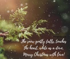best christmas cards best christmas cards messages quotes wishes images 2017