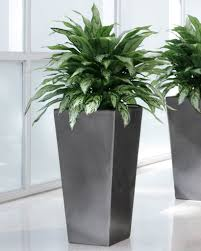decorative plant containers silkflowers plant and tree