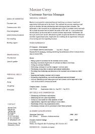 Project Manager Resume Objective Resume Project Manager Resume Sample Pdf Customer Service