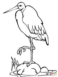 stork standing leg coloring free printable coloring