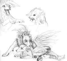 wolf sketches by myraethcorax on deviantart