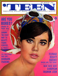 hairstyles in queens way 17 groovy hairstyles from 1960s teen magazine covers