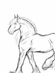 horse sketch by zenithcrystal on deviantart