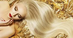 goldie locks hair extensions human hair extensons goldilocks south wales goldilocks hair