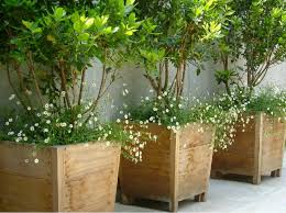 planters outstanding modern outdoor planter modern outdoor