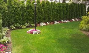 Landscaping Ideas For Big Backyards by Landscaping Corner Lot 100 Images Desert Landscaping Ideas