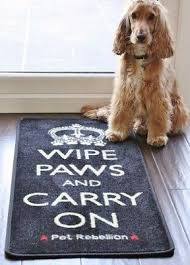 Amagabeli Wipe Your Paws Doormat The 25 Best Washable Door Mats Ideas On Pinterest Water Traps