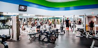Legacy Fitness Weight Bench Home Denton Fitness And Gym