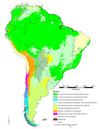 south america map rainforest what are biomes terrestrial biomes uwsslec libguides at