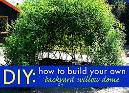 diy bio tecture build your own backyard living willow dome