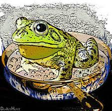 Fact Frog Meme - leadership and the boiling frog experiment