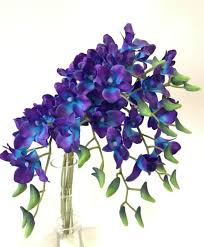 blue dendrobium orchids 6x real touch singapore blue purple orchid dendrobium