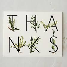 fern garden thank you card terrain