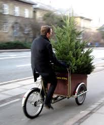 tree on a christiania cargobike bike