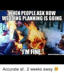 Wedding Planning Memes - when people ask how wedding planning is going i m fine memes