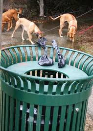 Burying Your Dog In The Backyard Legality Eco Friendly Options For Dog Waste Containment U2014 Simple Ecology