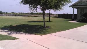 homeowner with weed free lawn lawnsite