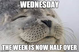 Wednesday Funny Meme - cool wednesday funny meme wednesday meme google search wednesday