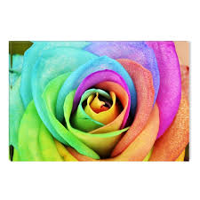 multicolored roses finest wall in europe canvas wallpaper by startonight