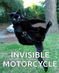 Invisible Cat Meme - invisible cat motorcycle meme discovered by yanito freminoshi