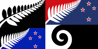 Kiwi Flag Sciblogs Is Our Flag A Brand