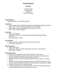 free resume writing services in atlanta ga seadoo childcare provider resume exle resumes pinterest