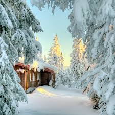 snow covered small cabin cabin living