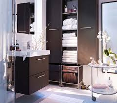 Ikea Bathroom Ideas Ikea Bathroom Furniture Storage Interior Design Ideas